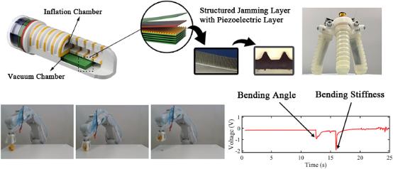 3D打印机器人